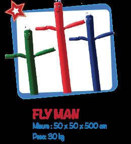 fly-man